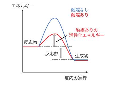 活性 化 エネルギー